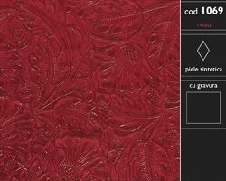 cod 1069 - piele ecologica